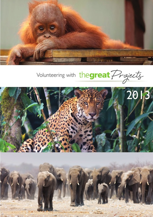 The Great Projects Brochure 2013