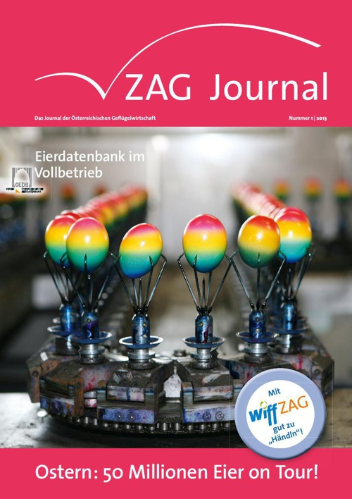 ZAG Journal 01 2013