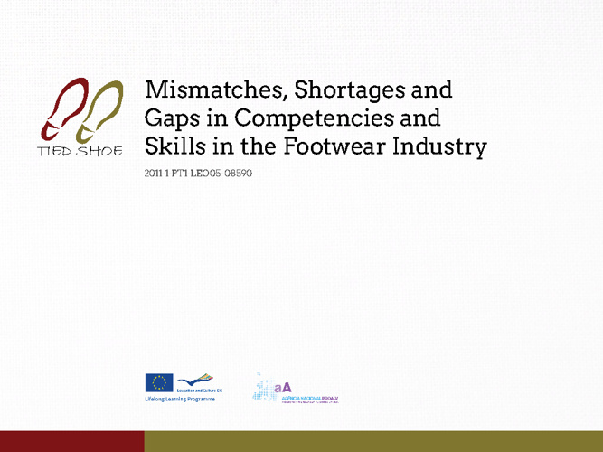 Mismatches, Shortages and Gaps in Competences and Skills