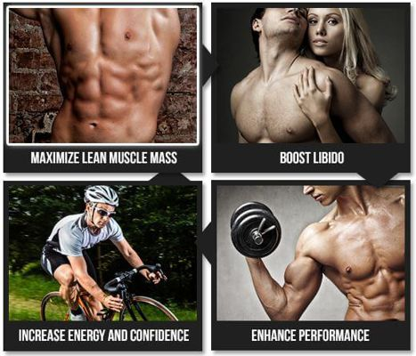 Convert Your Extra With In muscle By Using Bio Fuel No2