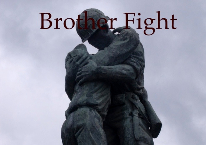 Brother Fight