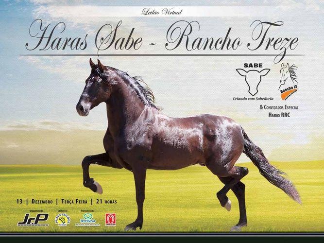 Leilão Rancho treze e Sabe 2016