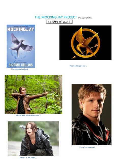 The Mocking Jay Project