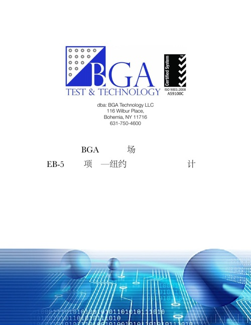 BGA Executive Summary (Chinese)