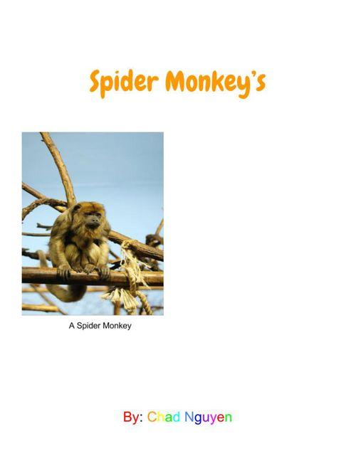 Spider Monkey's