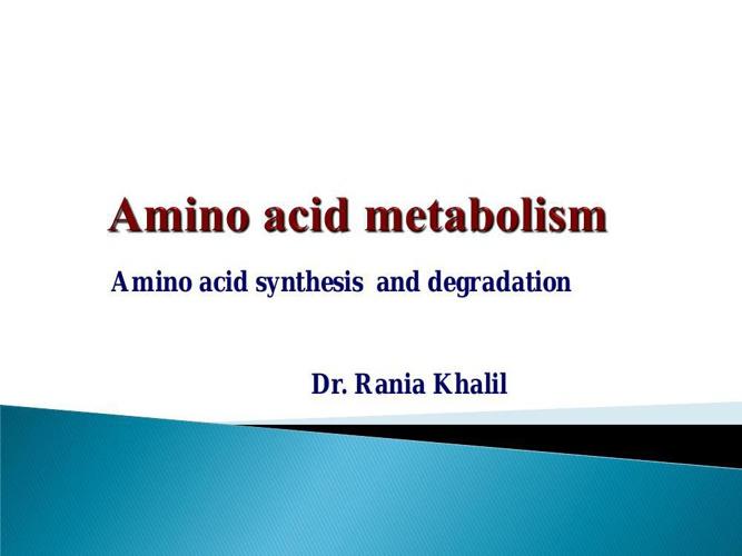 Amino acids_lecture 2