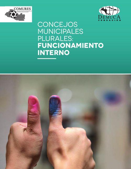 Concejos municipales plurales: Funcionamiento interno
