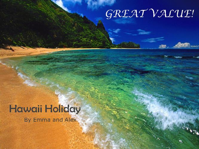 Hawaii Holiday Task