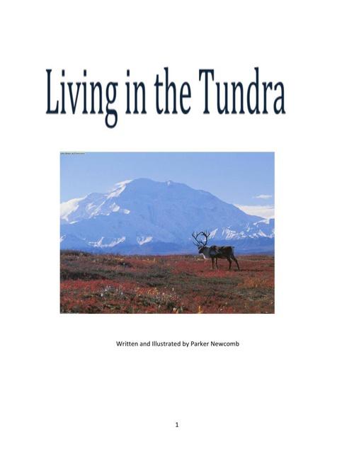 Parker- Tundra