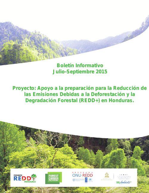 Boletín Informativo REDD+ Julio-Septiembre 2015