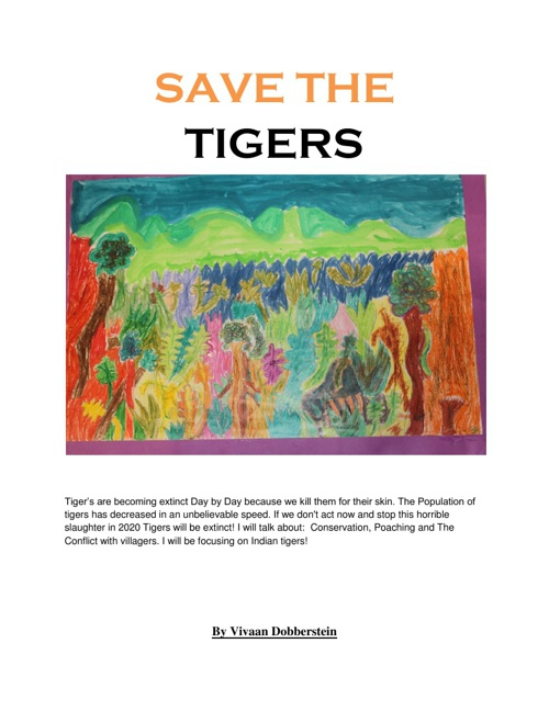Vivaan's Tiger book
