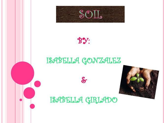 soil webquest
