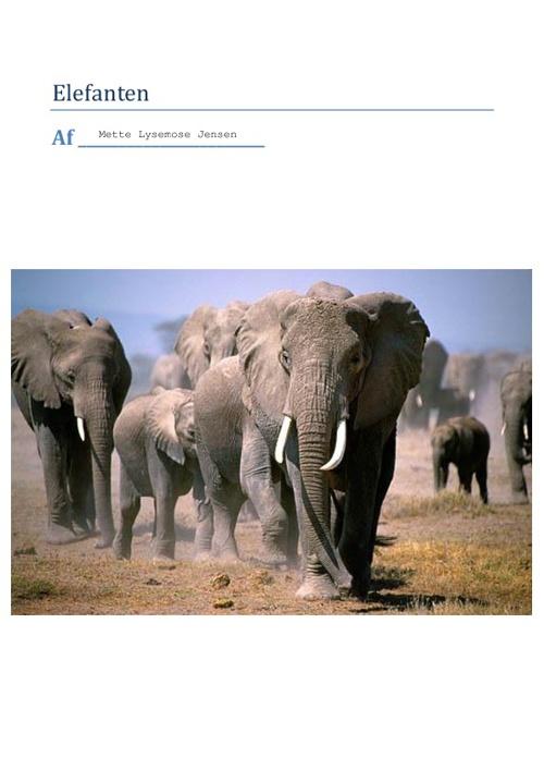 første forsøg om elefanter