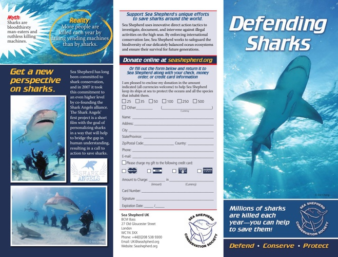 2009-Sea-Shepherd-Shark-Brochure-UK-sm