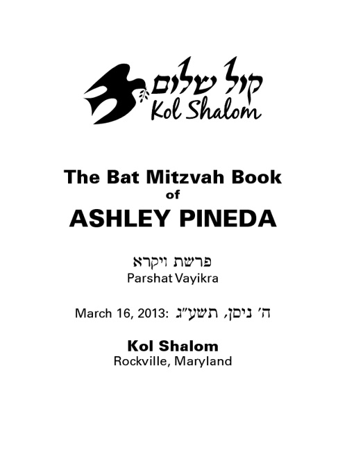 Ashley Pineda Bat Mitzvah Book