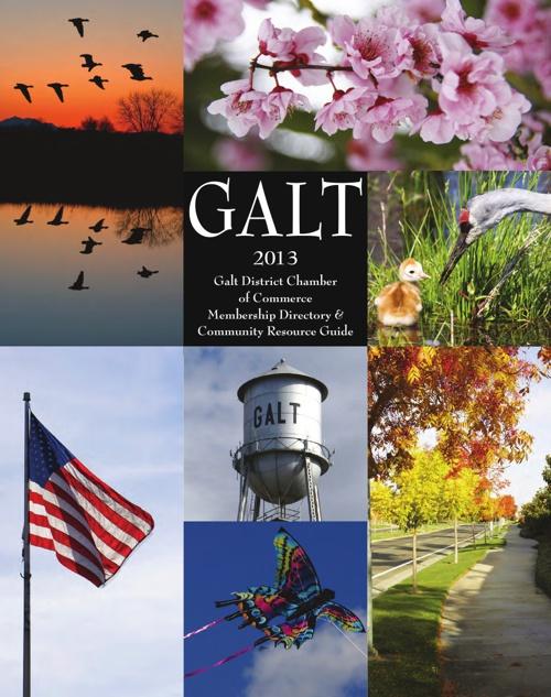 2013 Galt Chamber Directory