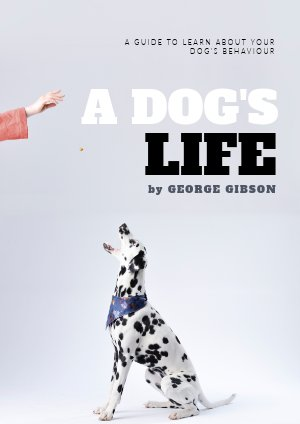 Dog Training Book Cover