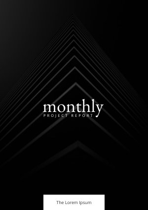Black And White Monthly Report Example