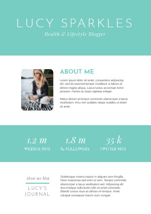 Free Media Kit Template for Bloggers