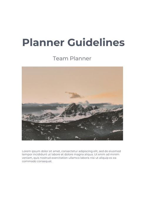 Program Plan Example