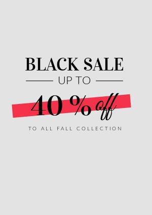 Black Friday Sale Flyer Voorbeeld