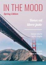 Reise & Fotomagazin-Design