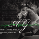 Plugged In Equine Marketing