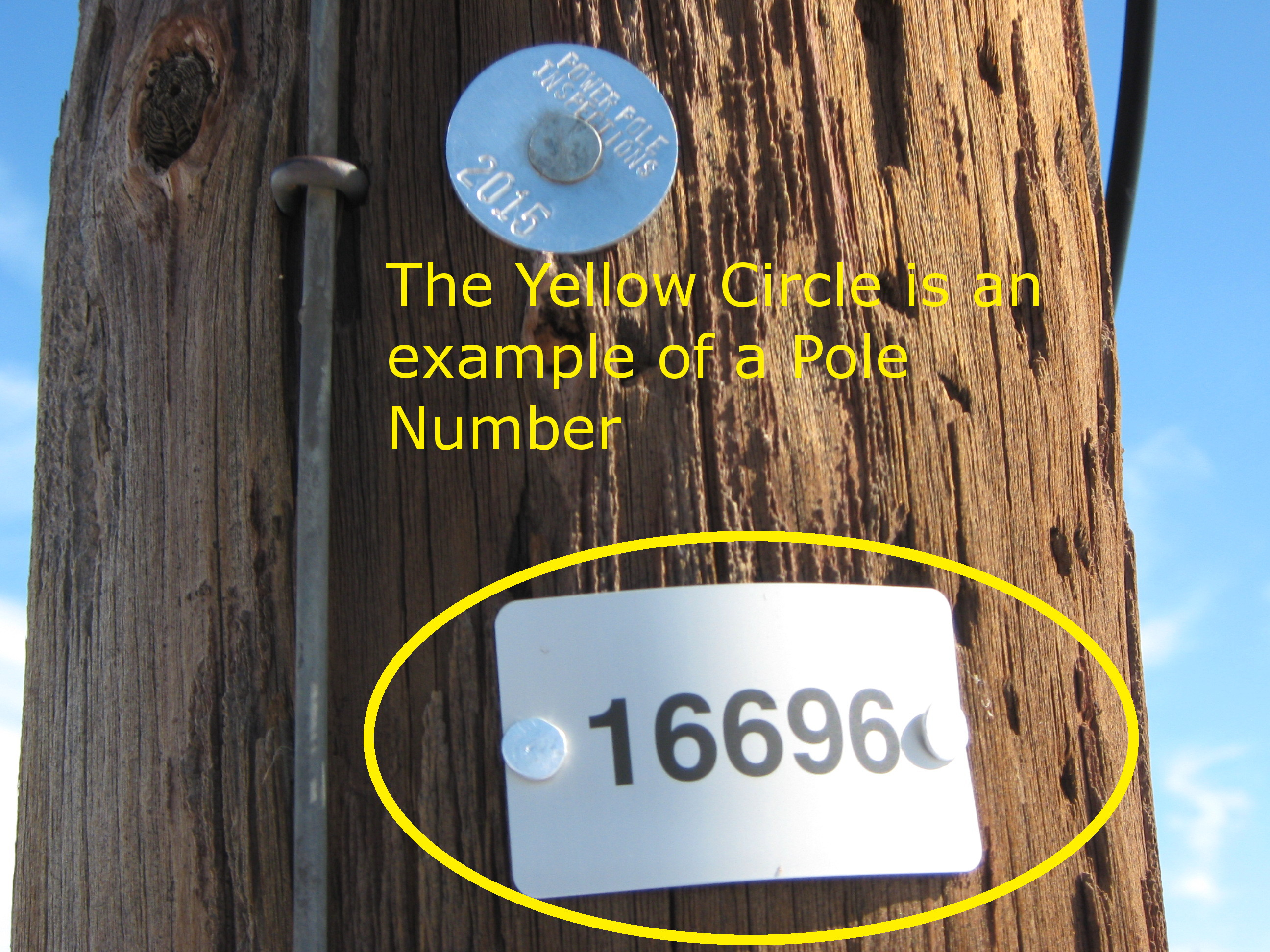 Pole Example