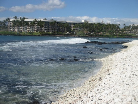 Hilton Waikoloa Village 2