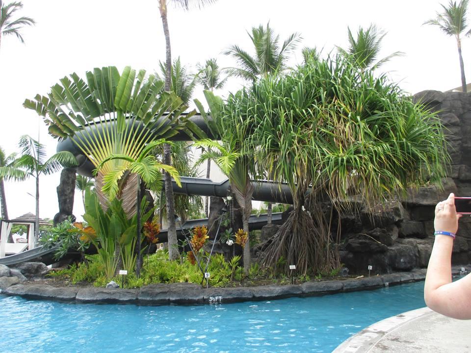 Sheraton Keahou Kona Beach Hotel
