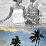 sarah-wedding-main
