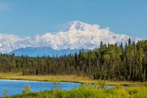 Denali National Park - Mt McKinley