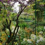 France and Belgium Vacation - Monet's Garden