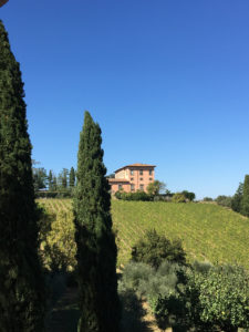 Tuscany Vineyards Italy Tour
