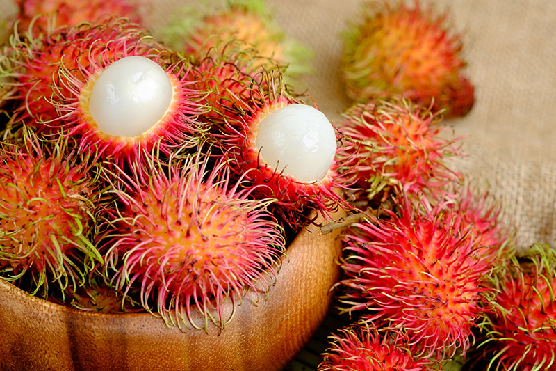 Exotic Fruits in Vietnam & Cambodia - rambutan