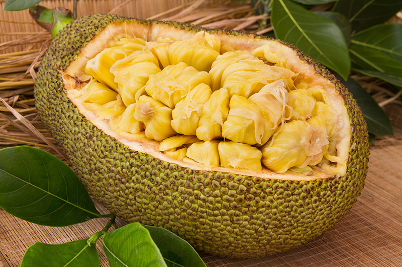 Exotic Fruits in Vietnam & Cambodia - jackfruit