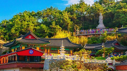 Surround Yourself with Nature in South Korea