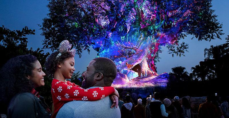 Disney Animal Kingdom Theme Park