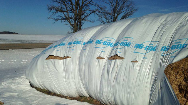 200-foot corn silage bag found slashed; sheriff investigates incident