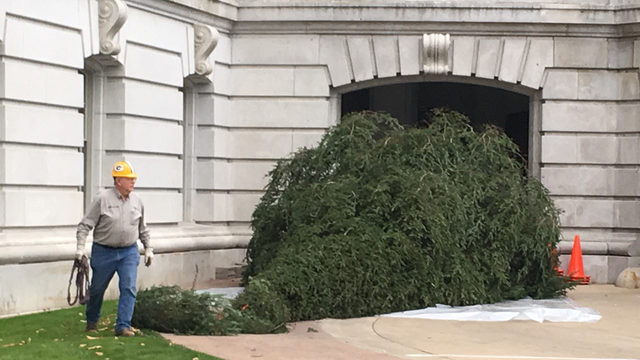 State Christmas tree delivered to Capitol