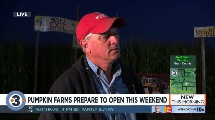 Get your gourd early! Cold, wet weather kills 20-percent of pumpkins as local farms prepare to open