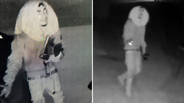 Police release surveillance images of suspects in string of burglaries, thefts