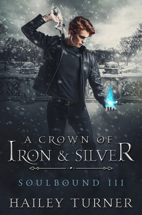 A Crown of Iron & Silver