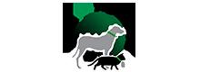 Global Pet Register