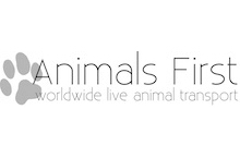 Animals First GesmbH (Formerly Animals First Bogner OG)