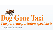 Dog Gone Taxi LLC