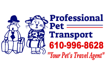 Professional Pet Transport