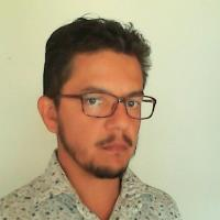Fabrisio Gomez-Garcia - PhD in Engineering Sciences - Subject Matter Expert from Kolabtree