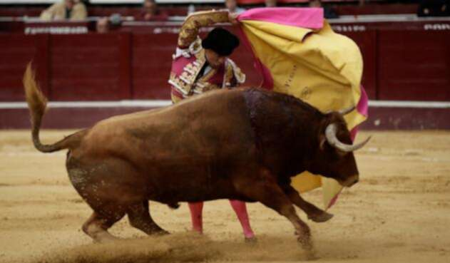 Corridas-de-toros-Colprensa-Juan-Páez.jpg