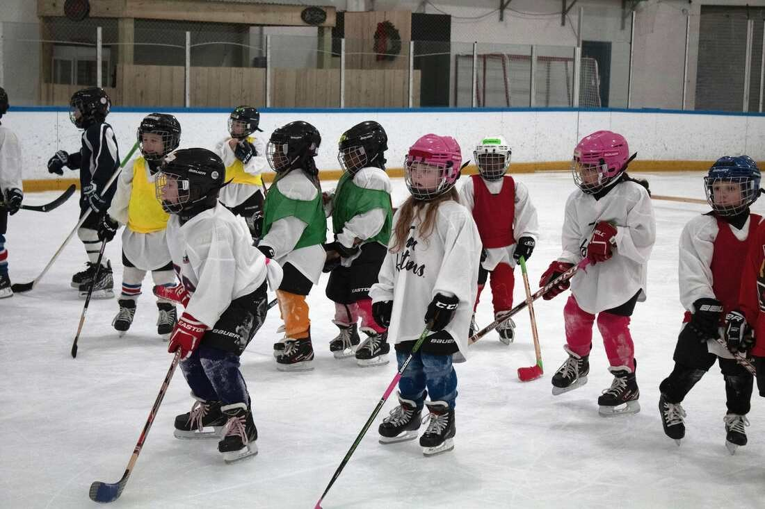 Learn to Play Ice Hockey at the Iceplex - Bill Gray's Regional Iceplex
